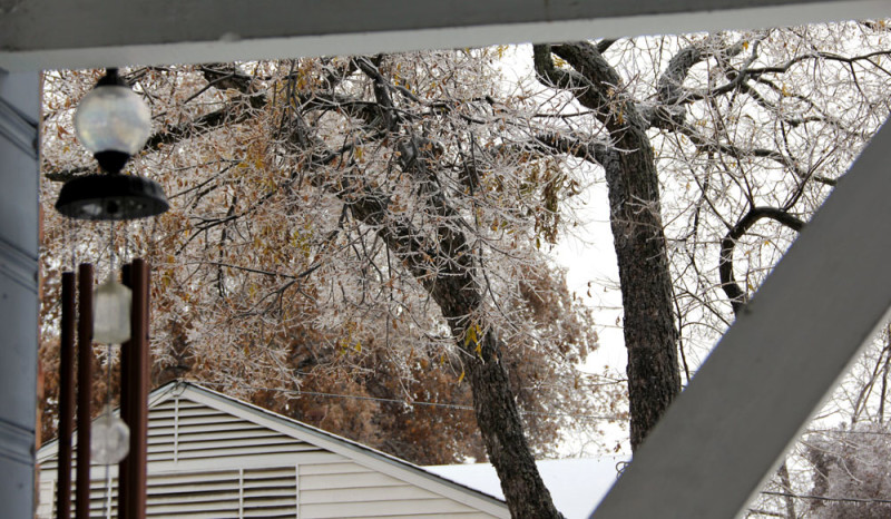 House framing ice trees | via @veritasphotog